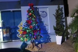 CACIS colabora com a decoração Natalina